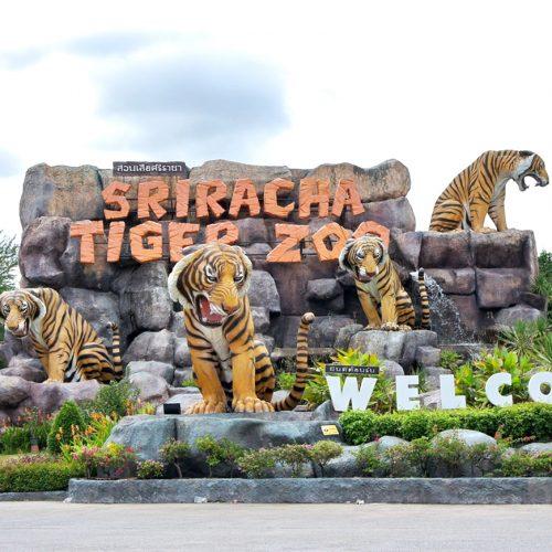 Sriracha Tiger Farm